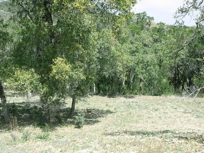 Земля for sales at 5 Acres with Hill Country Views 28556 Verde Mountain Trl  San Antonio, Техас 78261 Соединенные Штаты