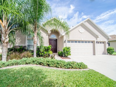 Single Family Home for sales at 3303 Diamond Falls Cir , Land O Lakes, FL 34638 3303  Diamond Falls Cir Land O' Lakes, Florida 34638 United States