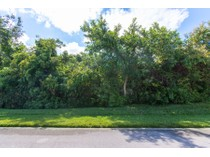 Земля for sales at MARCO ISLAND - KEY MARCO 1150  Blue Hill Creek Dr   Marco Island, Флорида 34145 Соединенные Штаты