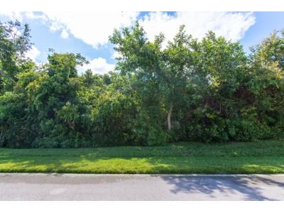 Terreno for sales at MARCO ISLAND - KEY MARCO 1150  Blue Hill Creek Dr Marco Island, Florida 34145 Estados Unidos