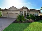 獨棟家庭住宅 for sales at EDGEWATER VILLAGE 8131  Waterview Blvd  Lakewood Ranch, 佛羅里達州 34202 美國