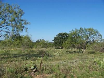 Granjas / Hacienda / Platanción for sales at Beautiful Hill Country Views 0 County Road 144 Marble Falls, Texas 78654 Estados Unidos