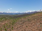 Land for  sales at One of a Kind Estate Lots 2630 River Meadows Dr   Midway, Utah 84049 United States