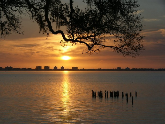 Maison unifamiliale for sales at INDIAN BEACH 916  Indian Beach Dr Sarasota, Florida 34234 États-Unis