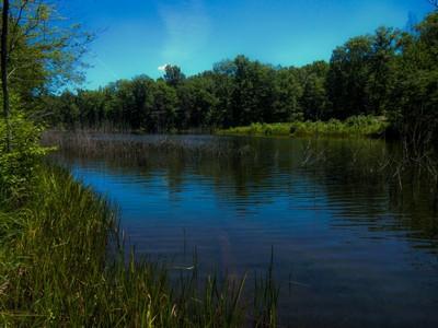 토지 for sales at Mineral Springs Plantation 14015 Meades Ct  Fredericksburg, 버지니아 22407 미국