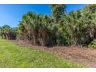 土地 for  sales at GOLDEN GATE ESTATES 5th Ave  SW   Naples, フロリダ 34117 アメリカ合衆国