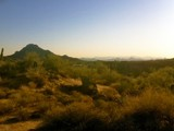 Property Of 9.57 Acres in Goldie Brown Pinnacle Peak