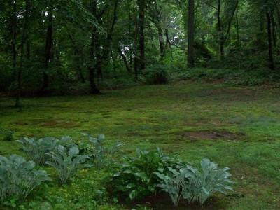 Land for sales at Land Wildwood Ct  Lattingtown, New York 11560 United States