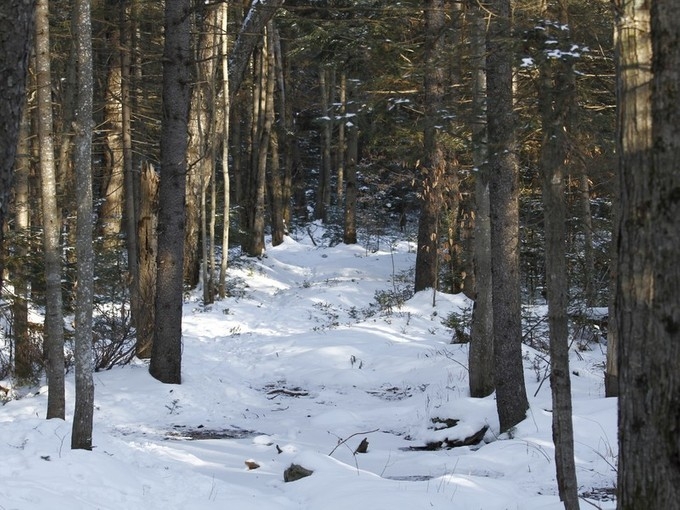 Land for sales at Winhall Hollow Building Lot 146 Winhall Hollow  Winhall, Vermont 05155 United States