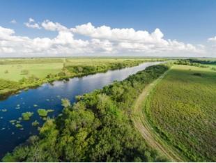 Farm / Ranch / Plantation for sales at 1,800 Acres Charco Salado Ranch N Hwy 281 Falfurrias, Texas 78355 United States