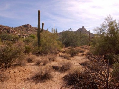 Terrain for sales at Fabulous Corner Homesite in Estancia 9717 E Estancia Way #75 Scottsdale, Arizona 85262 États-Unis