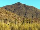 Terrain for sales at Mountain Preserve Custom Estate Lot Cave Creek, AZ 5455 E Mamie Maude Cir 9 Cave Creek, Arizona 85331 États-Unis