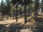 Terreno for  sales at Large Premier Lot with Mountain Views 3076 NW Winslow Dr   Bend, Oregon 97701 Stati Uniti