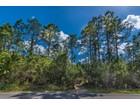 Land for sales at GOLDEN GATE ESTATES 6th Ave  SE  Naples, Florida 34117 Vereinigte Staaten
