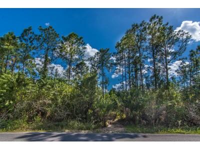 Terreno for sales at GOLDEN GATE ESTATES 6th Ave  SE  Naples, Florida 34117 Estados Unidos