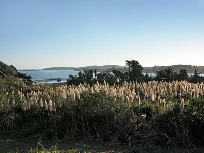 Land for sales at 1555 Eastshore Road  Bodega Bay, California 94923 United States