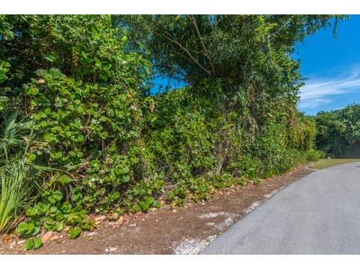 Land / Lots for sales at 116 Sea Lavender Ln  Marco Island, Florida 34145 United States