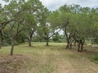 Farm / Ranch / Plantation for  sales at Gorgeous Lot in Boerne 43.5+/- Dodge Rd Boerne, Texas 78006 United States