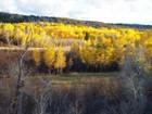 Terrain for sales at 2.5 + Acre Sites - Fox Creek Canyon 166 Balsam Ln Victor, Idaho 83455 États-Unis