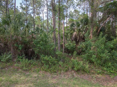 Terreno for sales at GOLDEN GATE ESTATES 5121  Hawthorn Woods Way Naples, Florida 34116 Stati Uniti