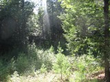 Property Of Lot 3 Hemlock Ln