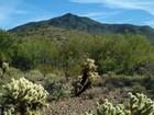 Terrain for sales at Mountain Preserve Custom Estate Lot Cave Creek, AZ 5410 E Mamie Maude Cir 10 Cave Creek, Arizona 85331 États-Unis
