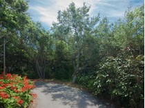 Земля for sales at MARCO ISLAND 395  Wild Coffee Ln   Marco Island, Флорида 34145 Соединенные Штаты