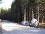 Property Of White Deer Circle Lots