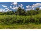 Land for sales at GOLDEN GATE ESTATES 2780  28th Ave  SE  Naples, Florida 34117 Vereinigte Staaten