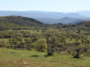 Additional photo for property listing at Lucky Star Ranch  Coulterville, California 95311 Estados Unidos