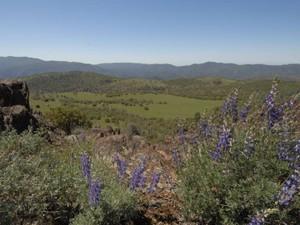 Hacienda / Granja / Rancho / Plantación for Ventas at Lucky Star Ranch  Coulterville, California 95311 Estados Unidos