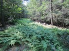 Land for sales at Peaceful Acreage High Rd. Ext Woodstock, New York 12498 United States