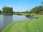 Terrain for sales at GREY OAKS - ESTUARY AT GREY OAKS 1264  Osprey Trl Naples, Florida 34105 États-Unis