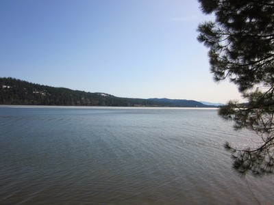 Land for sales at Wooded Lot at Cocolalla Estates Lot 12 Lakeview Terrace  Cocolalla, Idaho 83813 United States