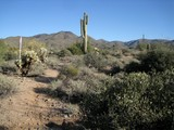 Property Of View 5+ Acre Homesite on a Bluff in Carefree