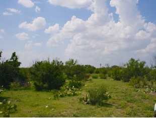 Farm / Ranch / Plantation for sales at 1,832+/- Acres CONOLY RANCH FM 131 Spofford, Texas 78832 United States