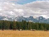 Property Of Private Ranch Near Jackson Hole
