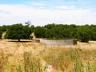Granjas / Hacienda / Platanción for  sales at 1789.24+/- Acre CLT/Tarr Ranch 1785 Rayner Hollow Harper, Texas 78631 Estados Unidos