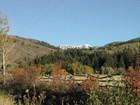 Terrain for sales at 2.5 + Acre Sites - Fox Creek Canyon 1600 E 5250 S Victor, Idaho 83455 États-Unis