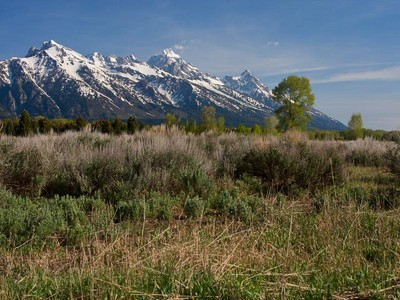 Terreno for sales at Exceptional Land at the Base of the Tetons 6325 N Red Tail Rd North Jackson Hole, Wyoming 83001 Estados Unidos