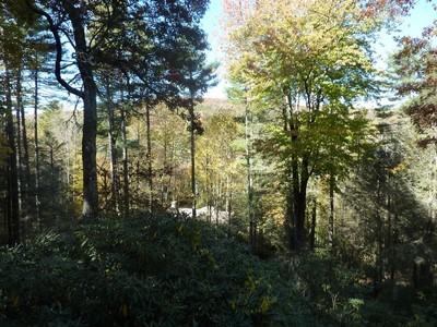 Casa para uma família for sales at 478 North Cobb Road  Highlands, Carolina Do Norte 28741 Estados Unidos