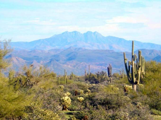 地產 for sales at Pristine Desert with Spectacular Mountain Views 142nd E Montello #007 Scottsdale, 亞利桑那州 85262 美國