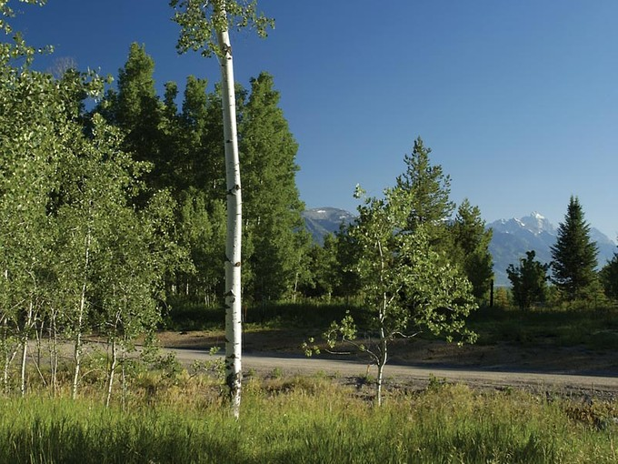 Terrain for sales at Riverview Ranch 5140 W Eagle Rd West Bank South, Wyoming 83014 États-Unis