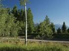 Arazi for  sales at Riverview Ranch 5140 W Eagle Rd   Wilson, Wyoming 83014 Amerika Birleşik Devletleri