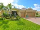 Single Family Home for  sales at ISLANDWALK 19324  Solarzano St   Venice, Florida 34293 United States
