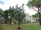 Farm / Ranch / Plantation for  sales at Rare typical farmhouse in Camargue  Arles, Provence-Alpes-Cote D'Azur 13200 France