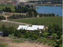 ブドウ園 for sales at Bald Hills, 46 Cornish Point Road, Bannockburn  Queenstown, サウスレイクス 9384 ニュージーランド