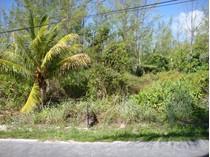 土地 for sales at Ocean Blvd Lot 82  Treasure Cay, アバコ 0000 バハマ
