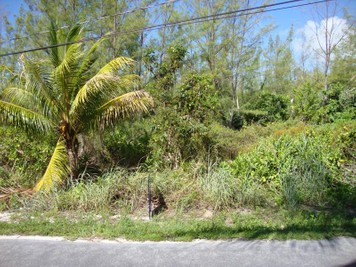 Land for sales at Ocean Blvd Lot 82  Treasure Cay, Abaco 0000 Bahamas