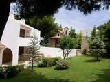 Property Of Pine Tree Villa